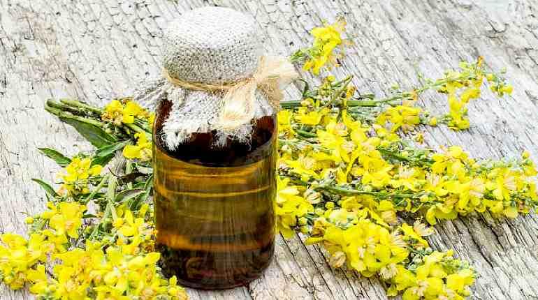 рыжиковое масло - полезные свойства