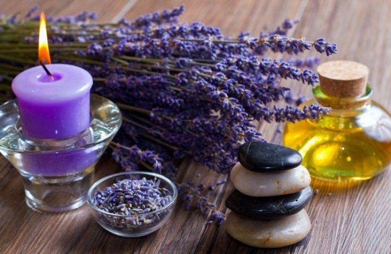 лаванда в ароматерапии