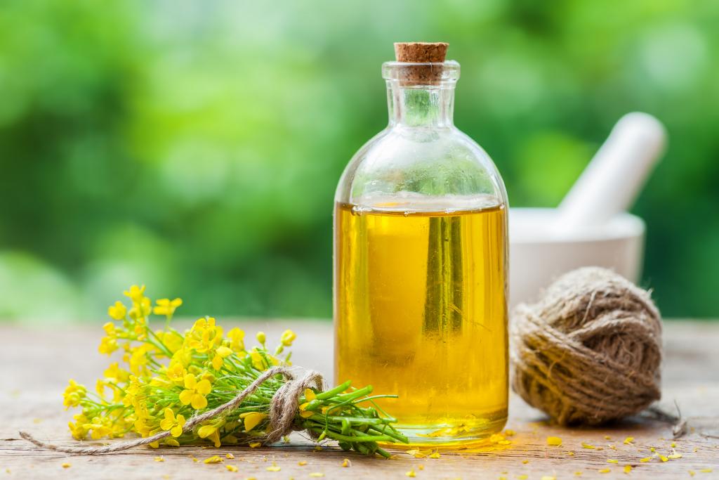 рыжиковое масло - полезные свойства и противопоказания