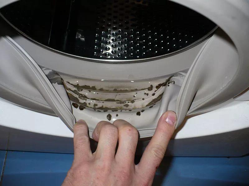 как почистить стиральную машинку от плесени